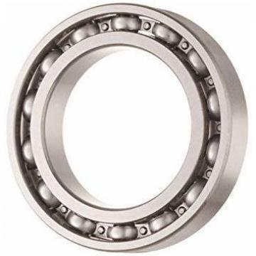Large Size 6911 Deep Groove Ball Bearing for Lawn Mower