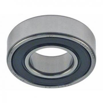 NU-202 Cylindrical Roller Bearing R115E